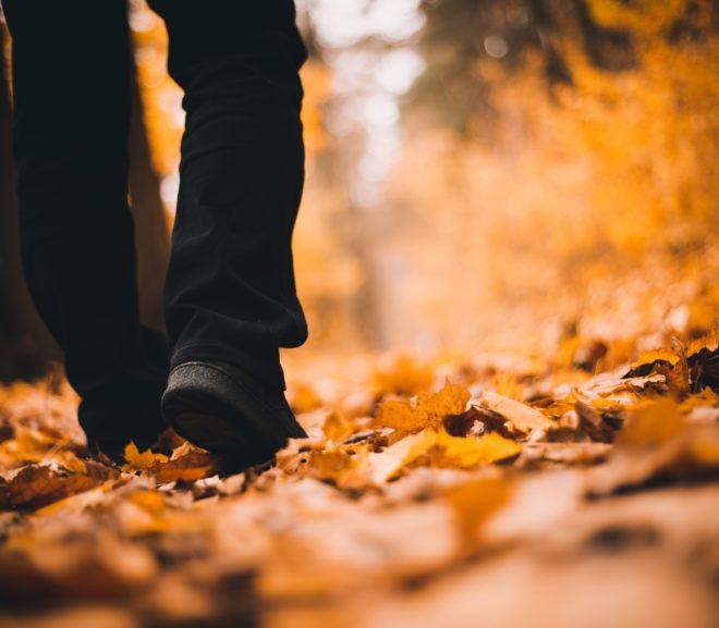 The Rite of Steps: A Prayer
